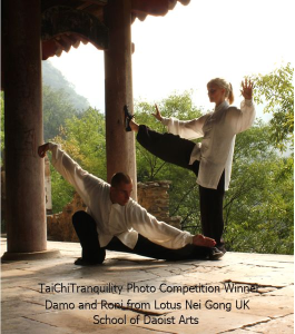Tai Chi Uniform Standard Competition by Tai Chi Tranquility