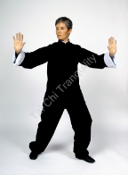 Formal Tai Chi Suit from $90