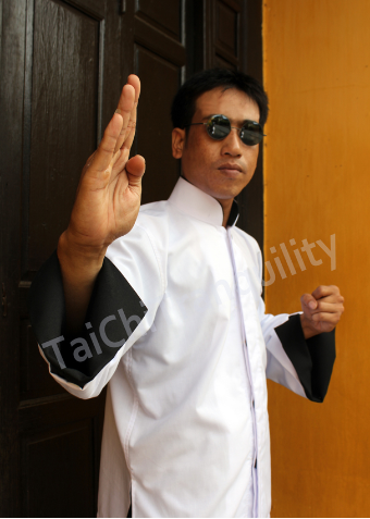 Jet Li look Martial Arts Jacket from Tai Chi Tranquility