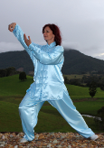 Standard Competition Tai Chi Uniform from $75