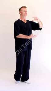 Casual V Neck Short Sleeve Tai Chi Suit from $70