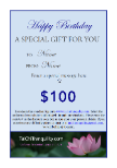 Gift Voucher Birthday $100